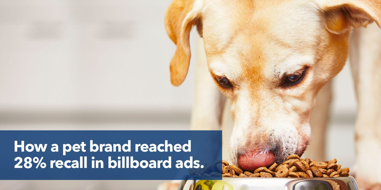 Doggy billboard gets 28% recall.